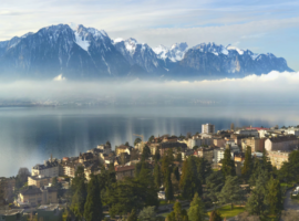 demenagement national Suisse